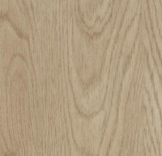 * whitewash elegant oak cc60064