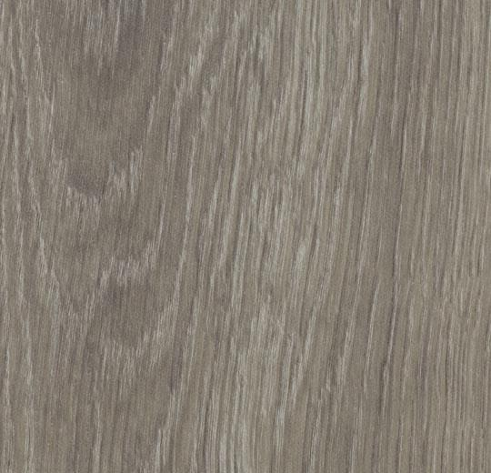 grey giant oak cc60280