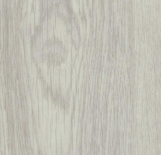 white giant oak cc60286