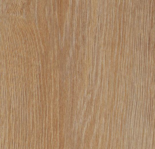 pure oak cc60295