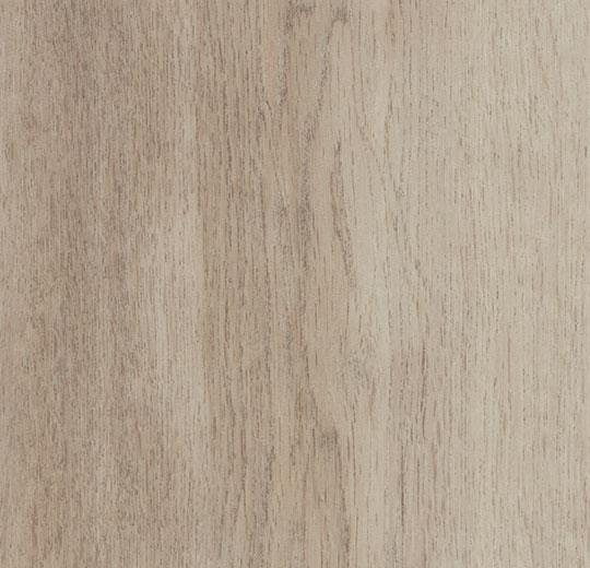white autumn oak cc60350