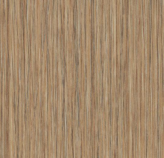 natural seagrass cc61255