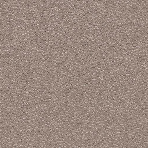 taupe 180232